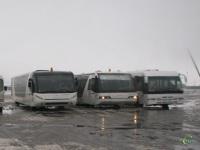 Москва. Neoplan N9122L №619, Neoplan N9122L №621, Cobus 3000 №622