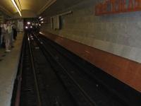 Москва. Приближение поезда на станции Парк Победы Арбатско-Покровской линии