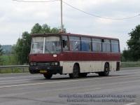 Ростов-на-Дону. Ikarus 256 ак920
