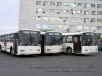 Ростов-на-Дону. Mercedes-Benz O345 н804ва