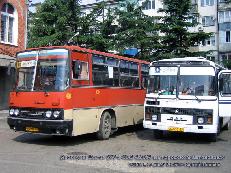 Туапсе. Ikarus 256 ка409, ПАЗ-32053 ка550