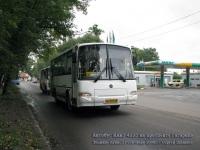 Великие Луки. ПАЗ-4230-03 ав973
