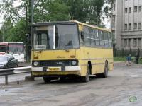 Вологда. Ikarus 260.50 ае481